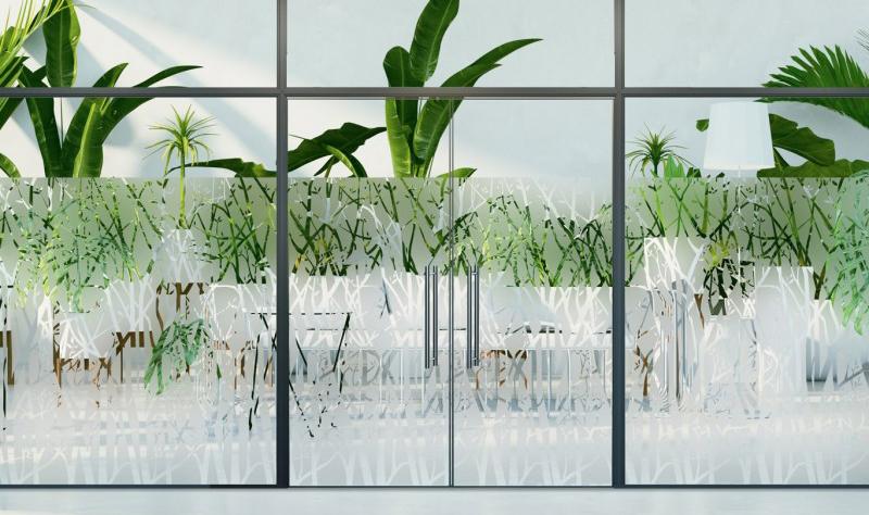 film-arbres-transparents-Int530 (2)